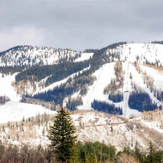 Ski Area Views - Building site on over 3 acres along the highly coveted Anglers Drive <br />
