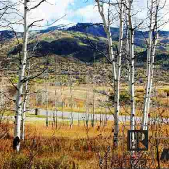 Nearly 3 Acre Parcel - Magnificent parcel in aspens