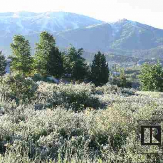 Quiet, Ideal Neighborhood - Land parcel with gently sloping grade