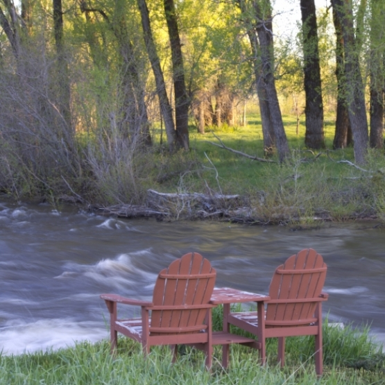 Wild Mountain Ranch - 15 acres on Walton Creek just two miles from town