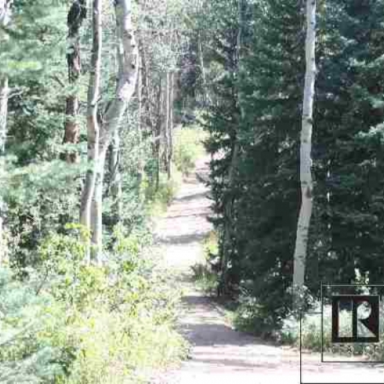 Tatanka Ridge Land - Surrounded by forest and only 4 miles from town