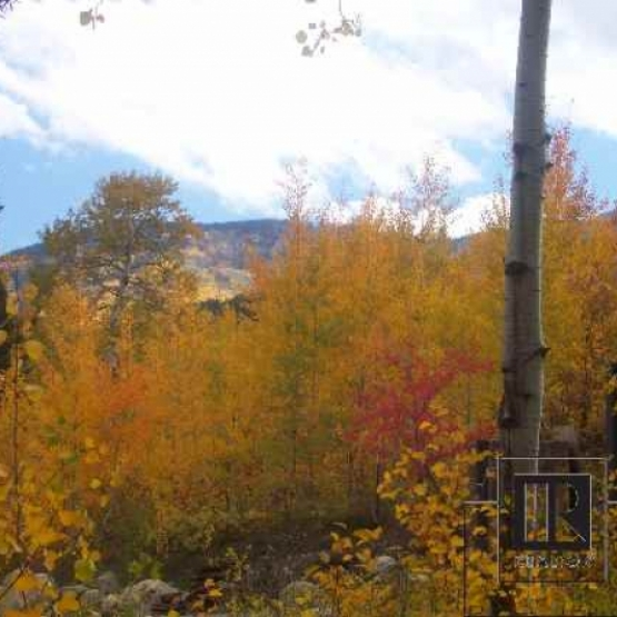 Graystone Homesite - A very private treed lot in a park-like setting.  Views to top of ski area with direct access to Fish Creek and ski touring trails<br />