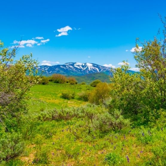 Deer Mountain Estates Homesite - This 5 acre homesite with quick and easy access to downtown and national forest, features Mtn + Valley Views<br />
