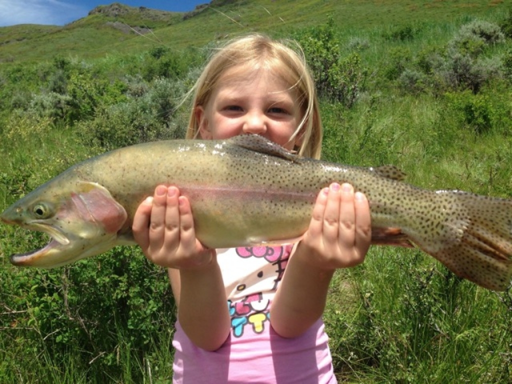 What We Catch and When - Steamboat Springs Fishing Adventures